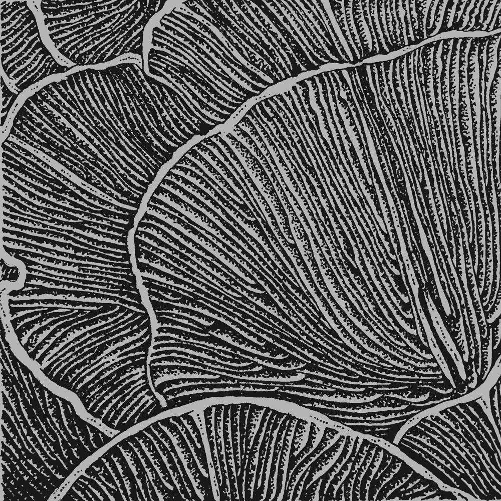 Gills illustration by Victoria Gray