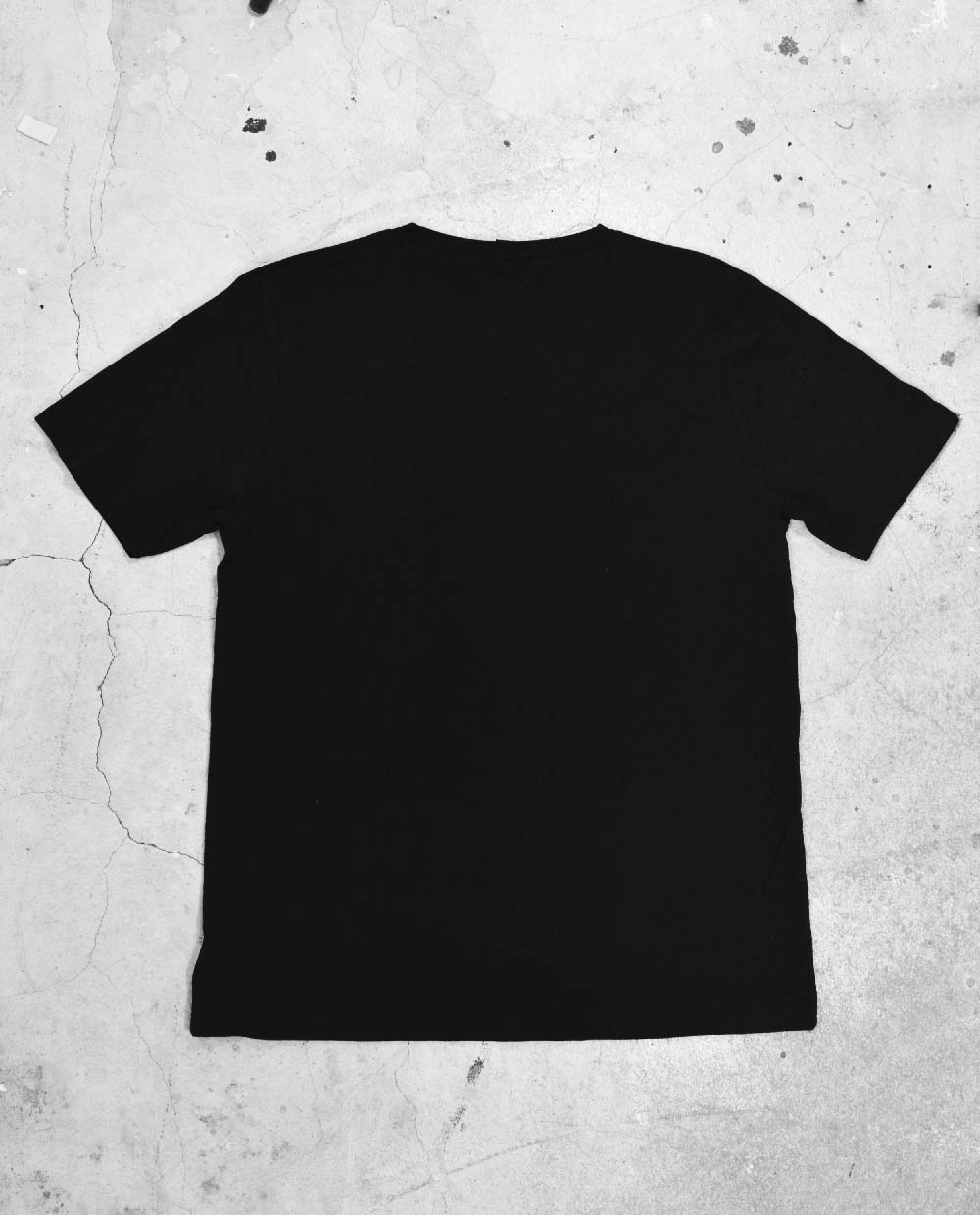 Back of Blank Black Regular T Shirt