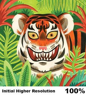Higher Resolution Original Digital Tiger Image